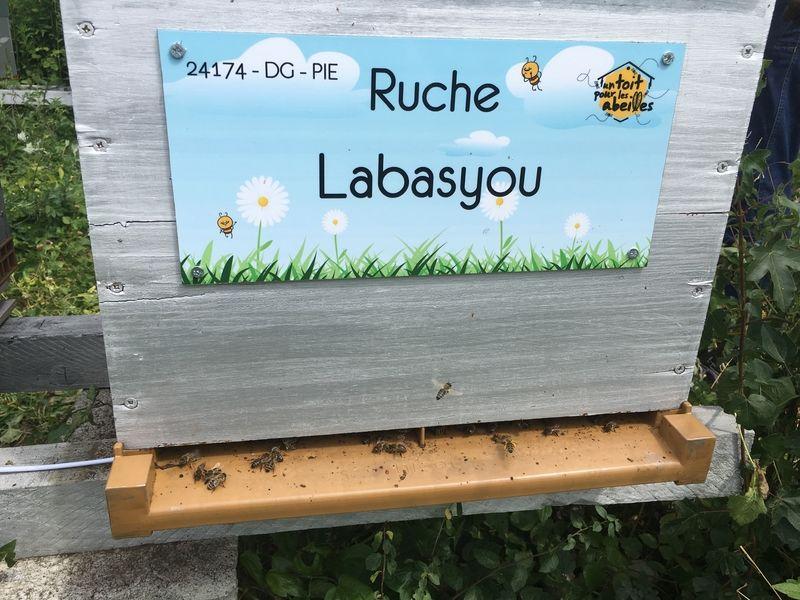 La ruche Labasyou