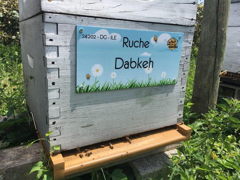 La ruche Dabkeh