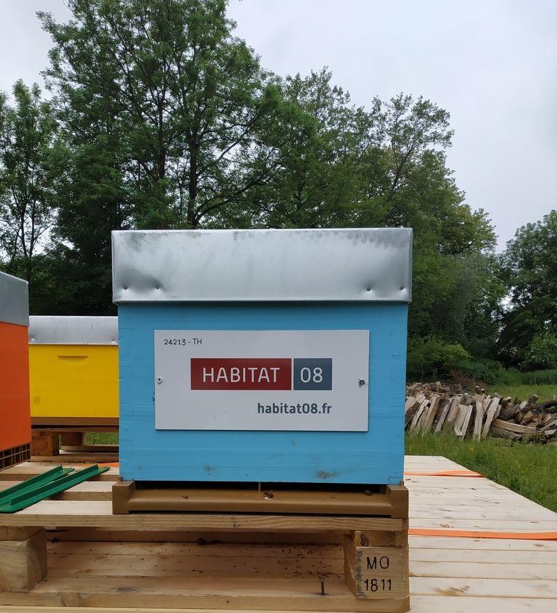 La ruche HABITAT 08