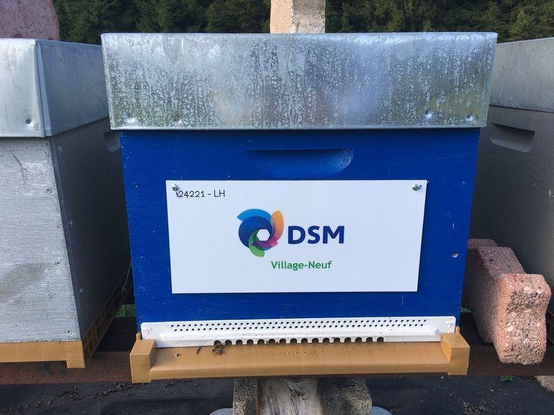 La ruche DSM - VILLAGE NEUF