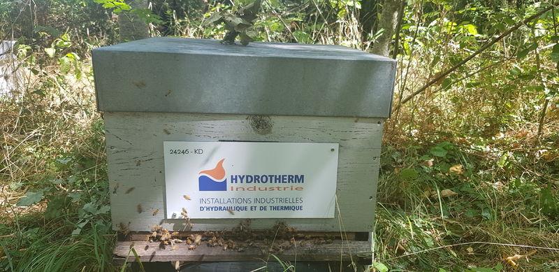 La ruche HYDROTHERM INDUSTRIE