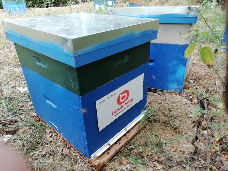 La ruche Boulanger St Orens