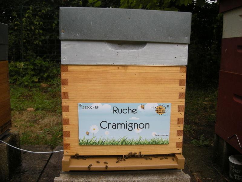 La ruche Cramignon