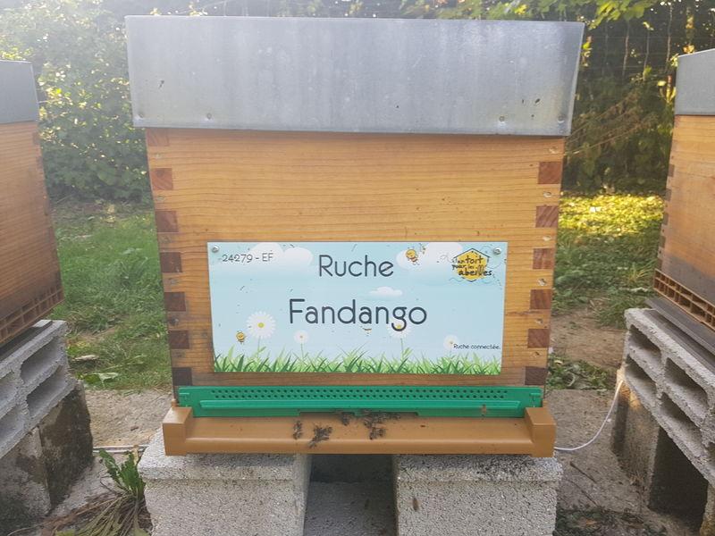 La ruche Fandango