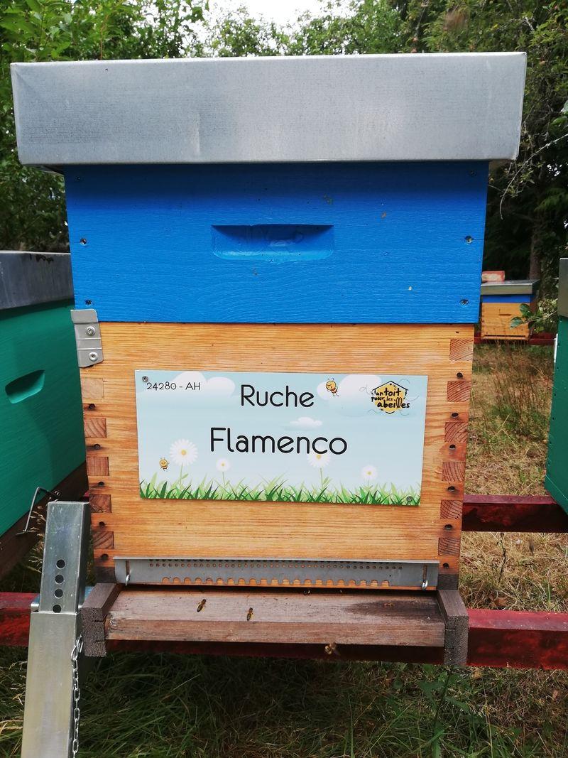 La ruche Flamenco