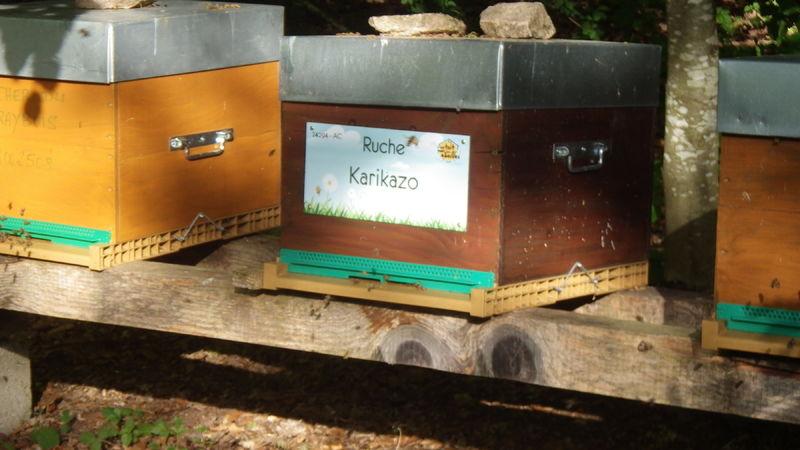 La ruche Karikazo