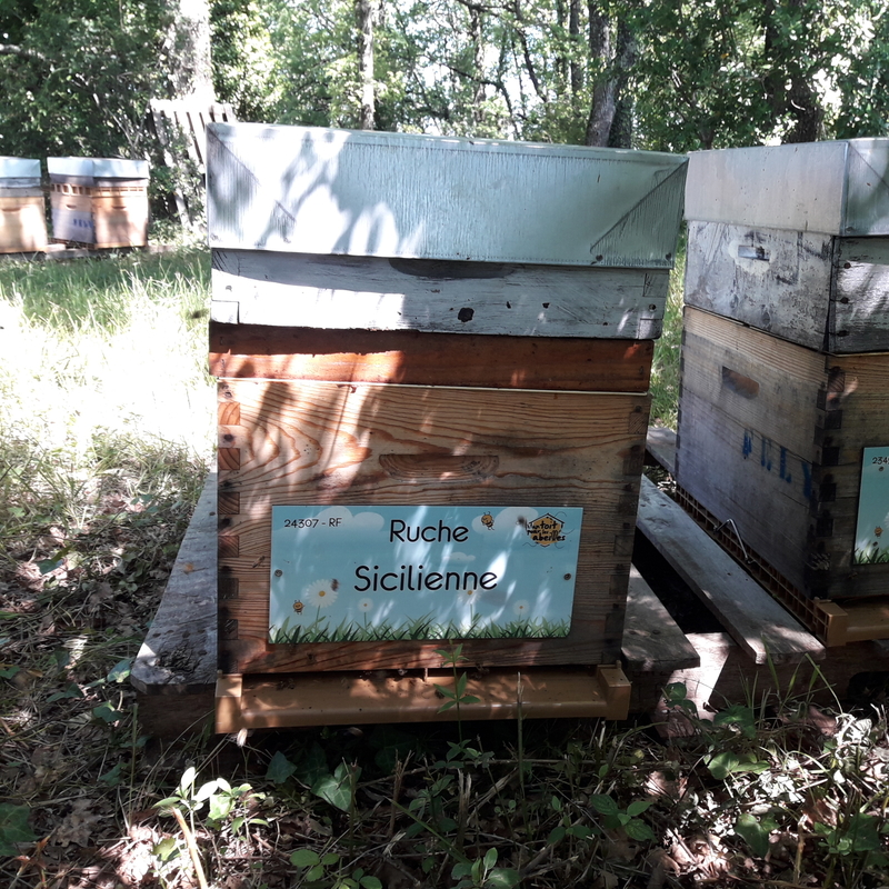 La ruche Sicilienne