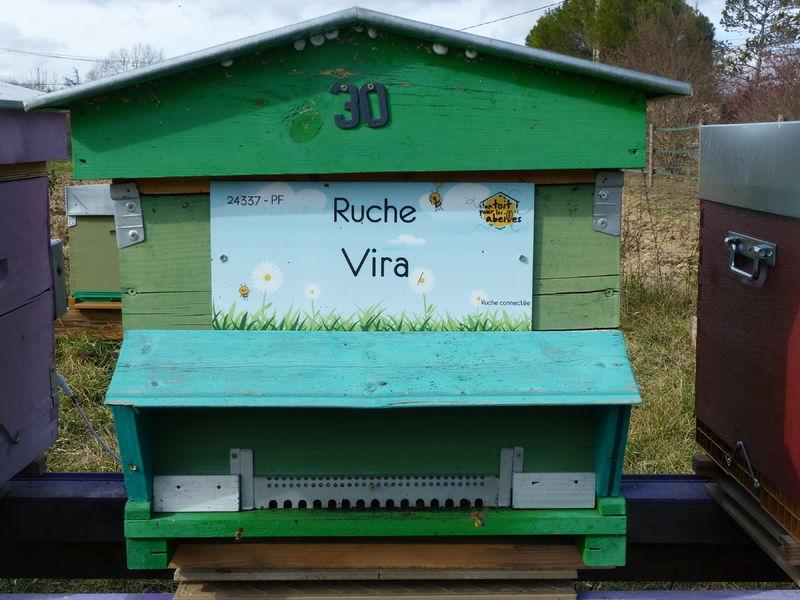 La ruche Vira