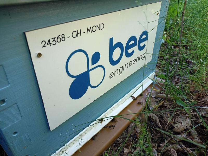 La ruche Bee engineering