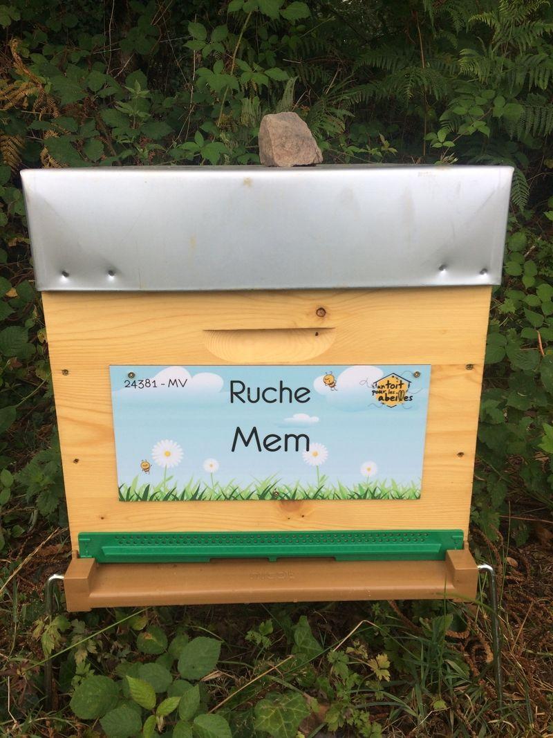 La ruche Mem