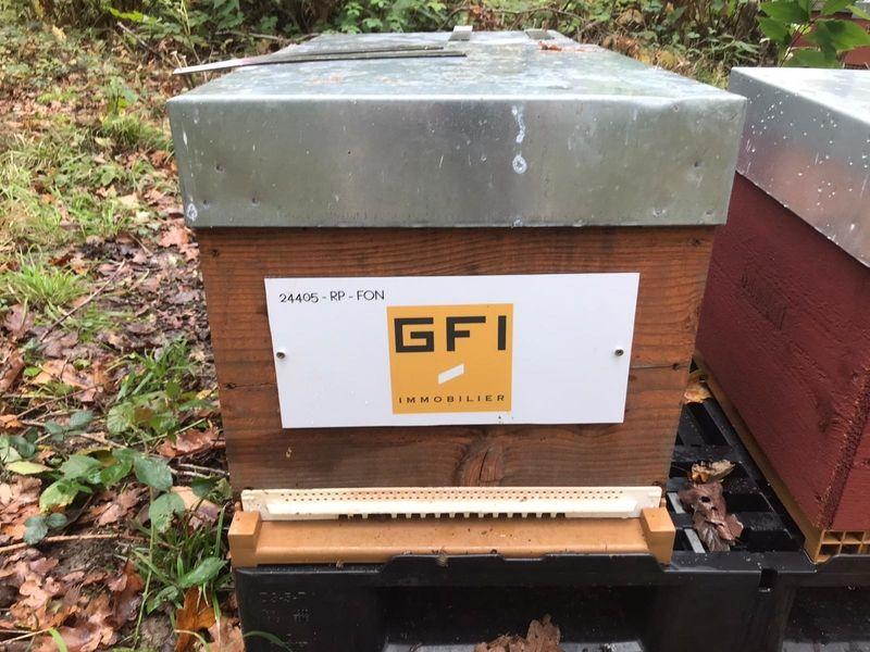 La ruche Gfi