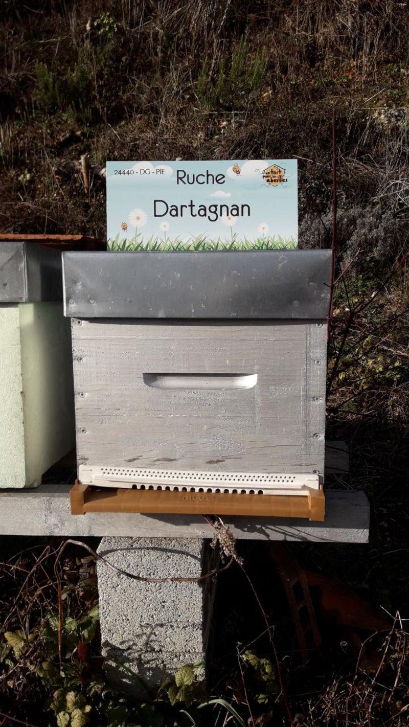 La ruche Dartagnan
