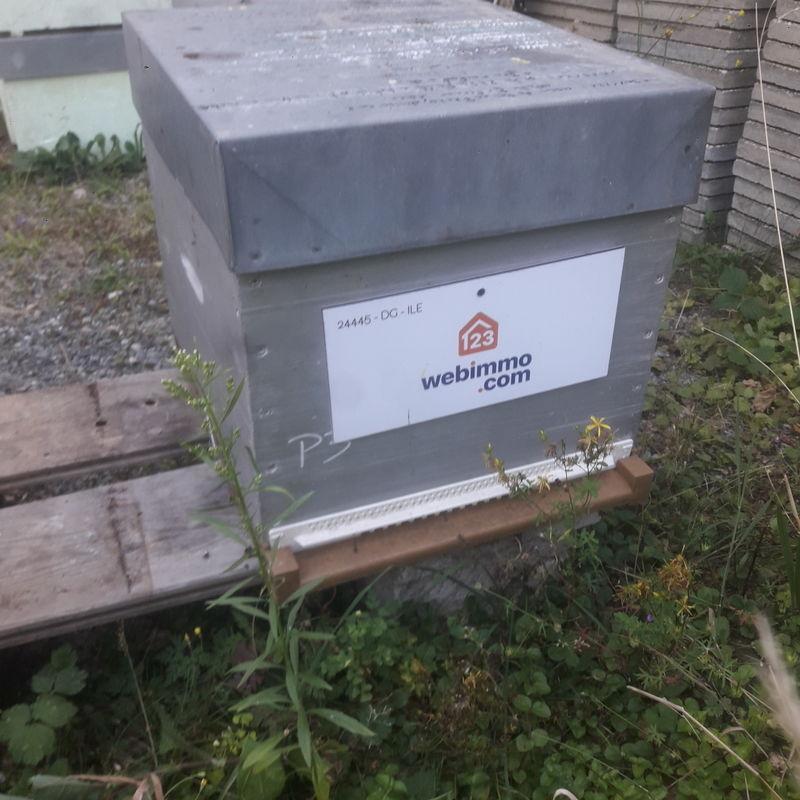 La ruche 123Webimmo Grenoble Est