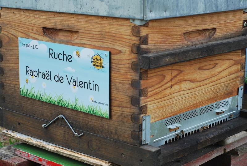 La ruche Raphaël de Valentin