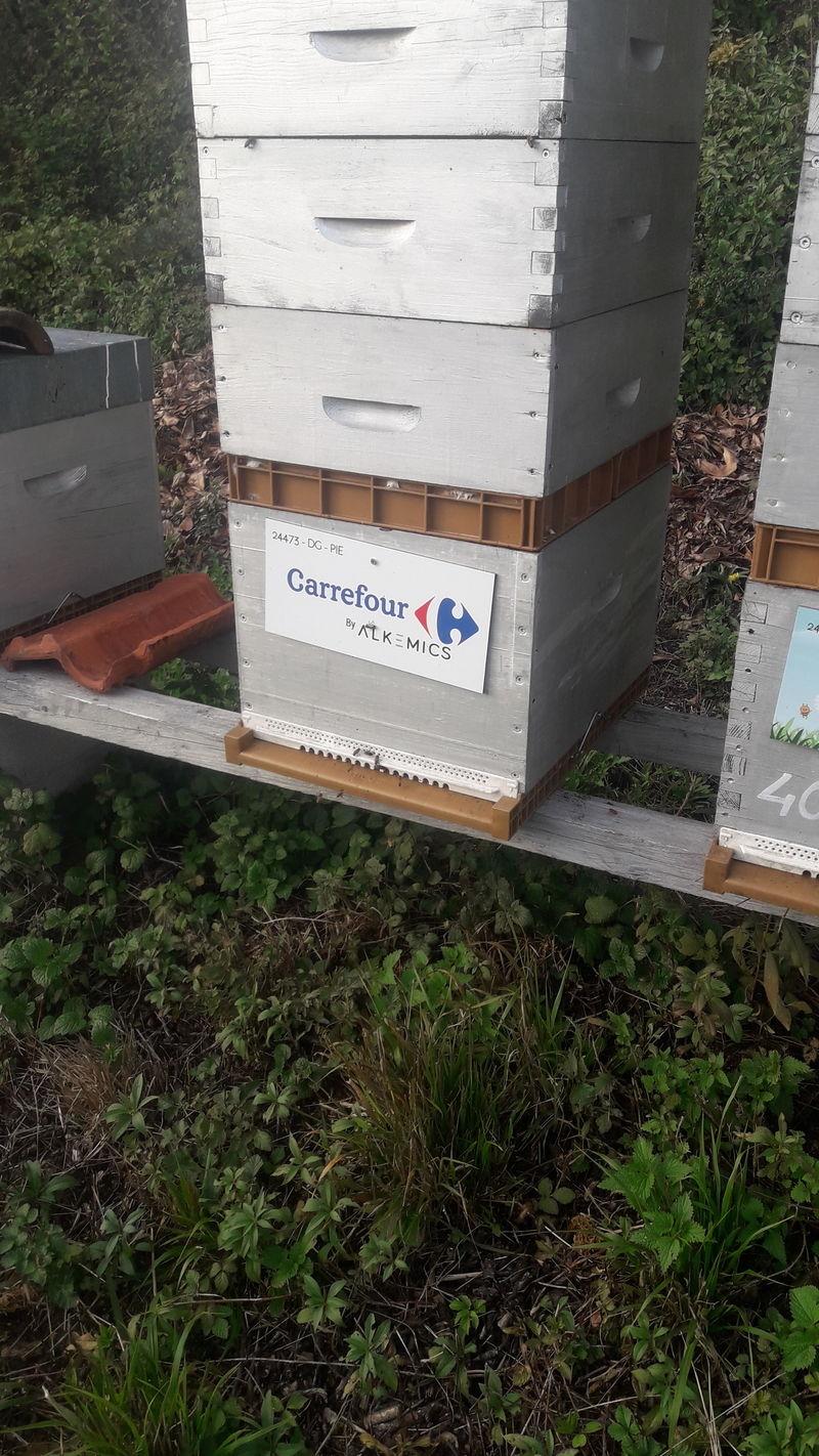 La ruche ALKEMICS