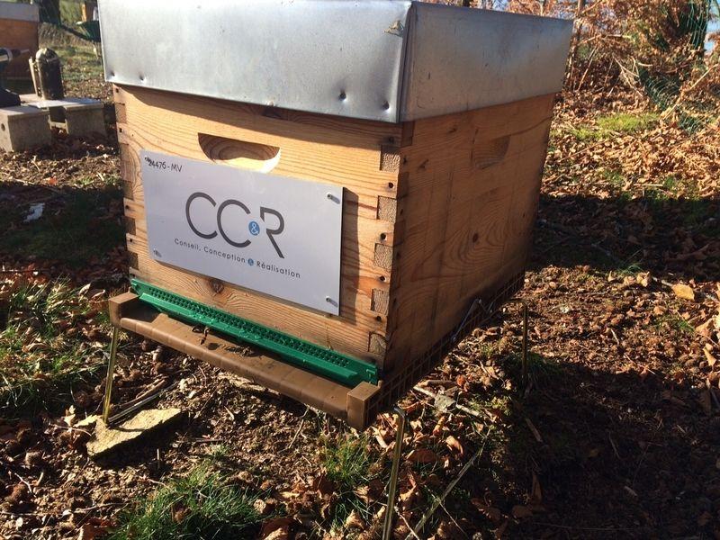 La ruche Conseil Conception & Réalisation