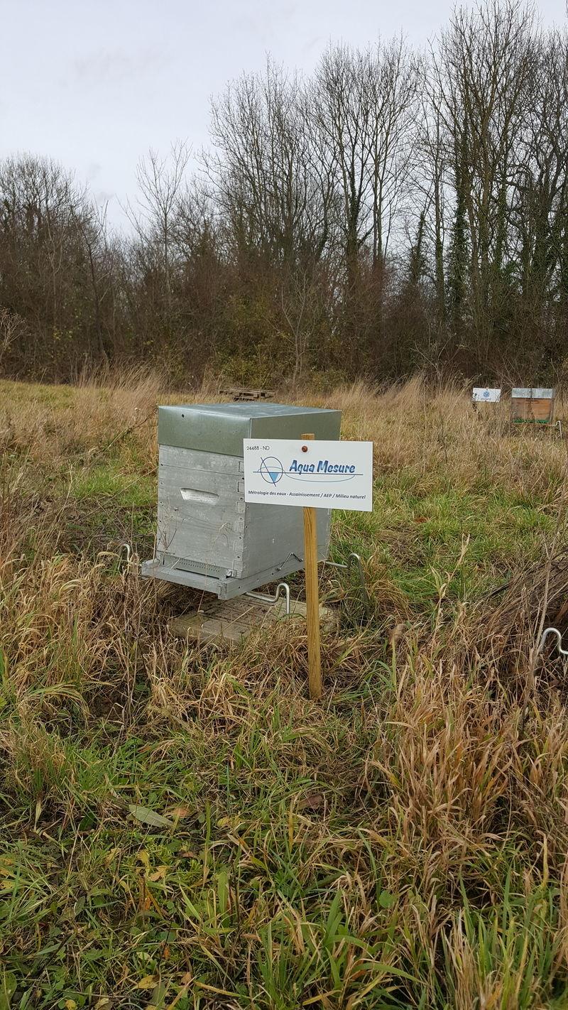 La ruche aqua MESURE