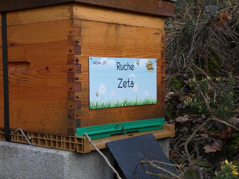 La ruche Zeta
