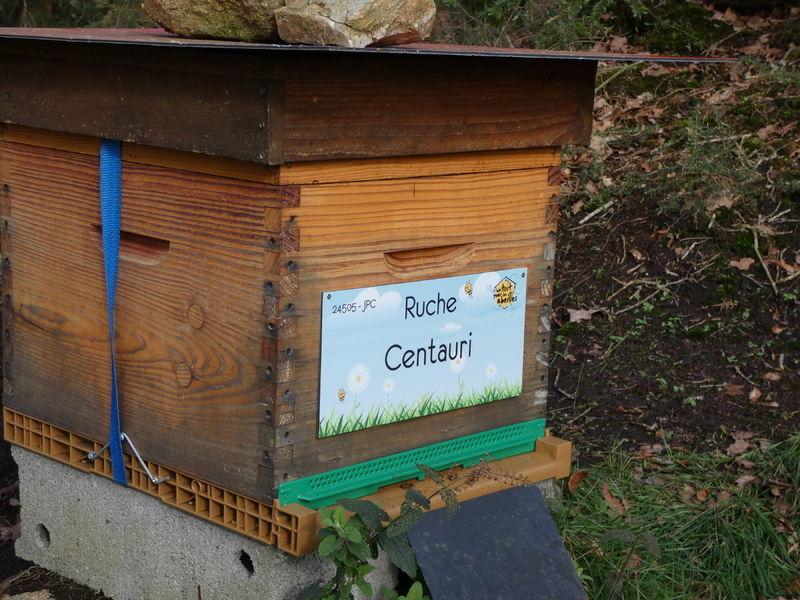 La ruche Centauri