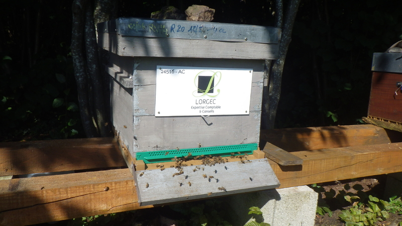 La ruche Lorgec