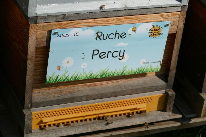 La ruche Percy