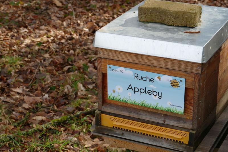 La ruche Appleby