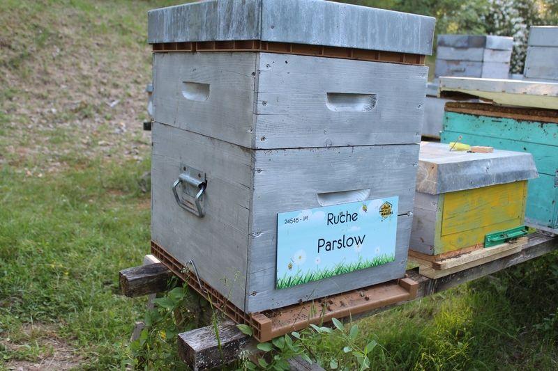 La ruche Parslow