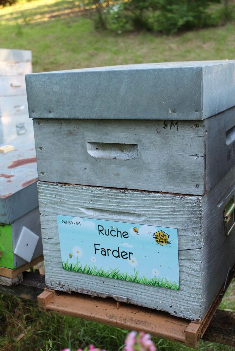 La ruche Farder