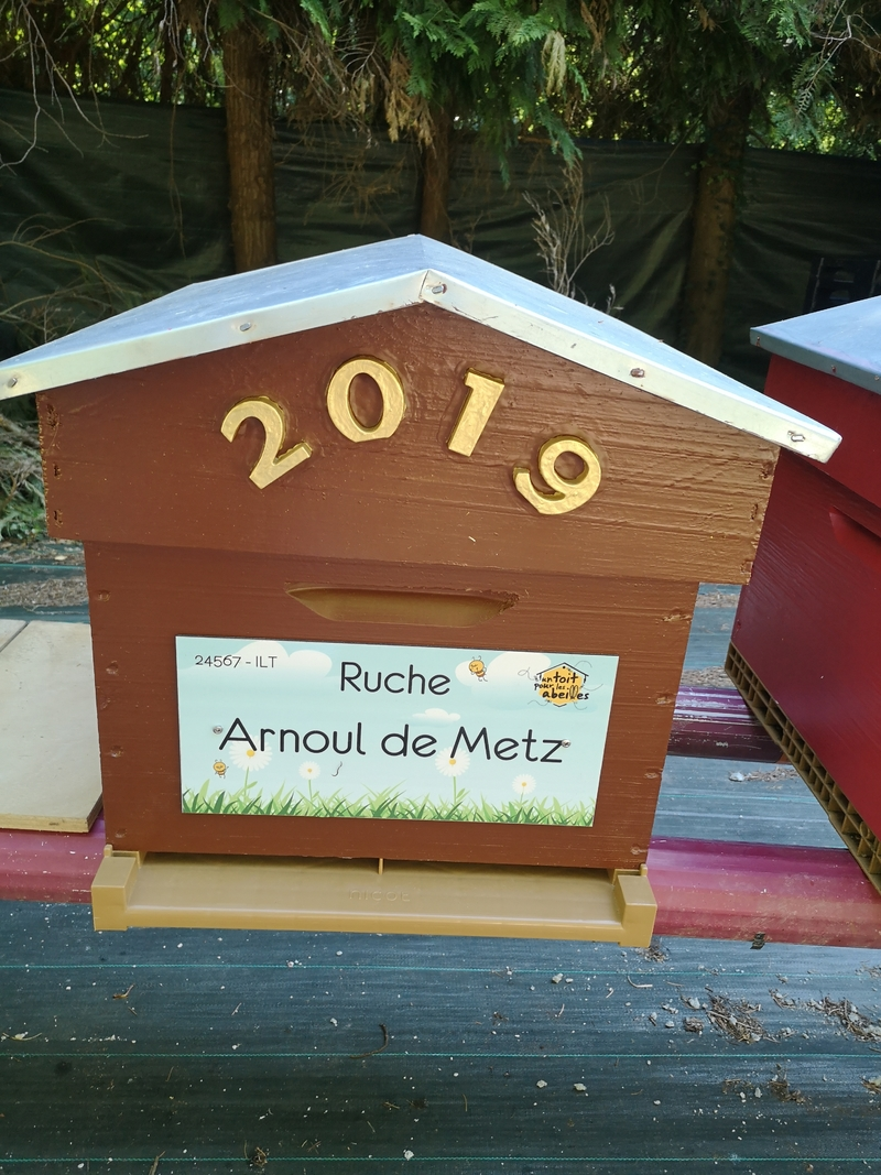 La ruche Arnoul de Metz