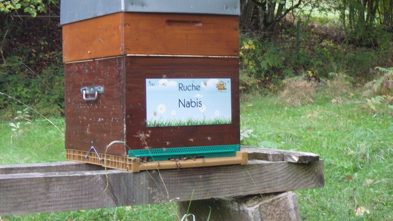 La ruche Nabis