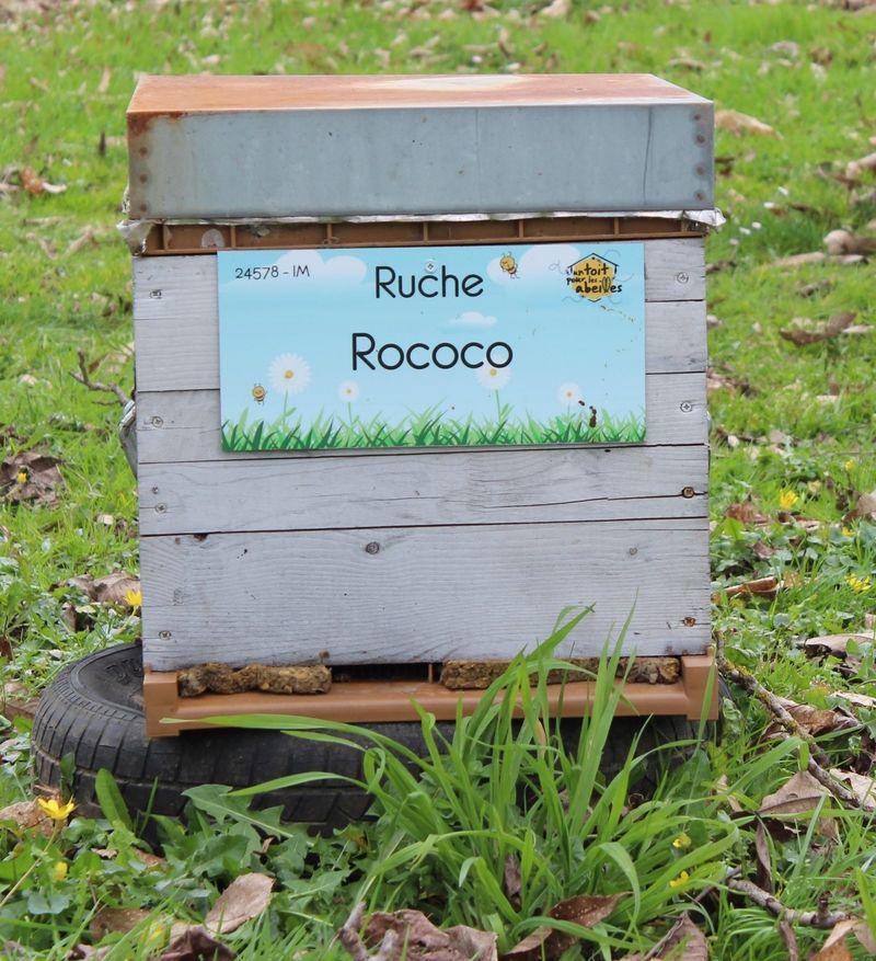 La ruche Rococo