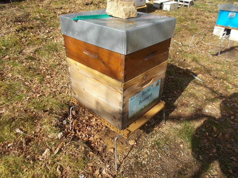 La ruche Bonnard