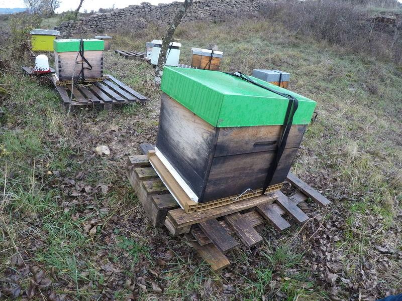 La ruche Brueghel