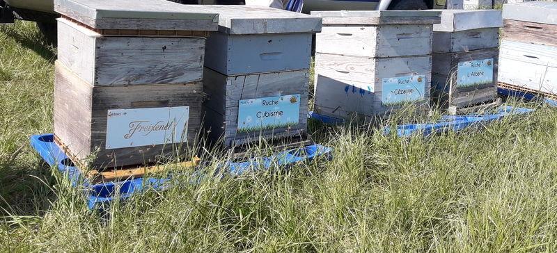 La ruche Cézanne