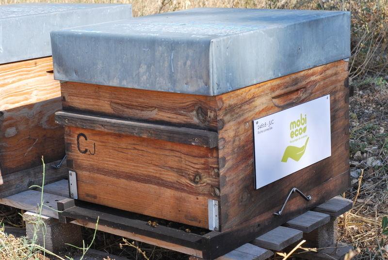La ruche MOBI ECO