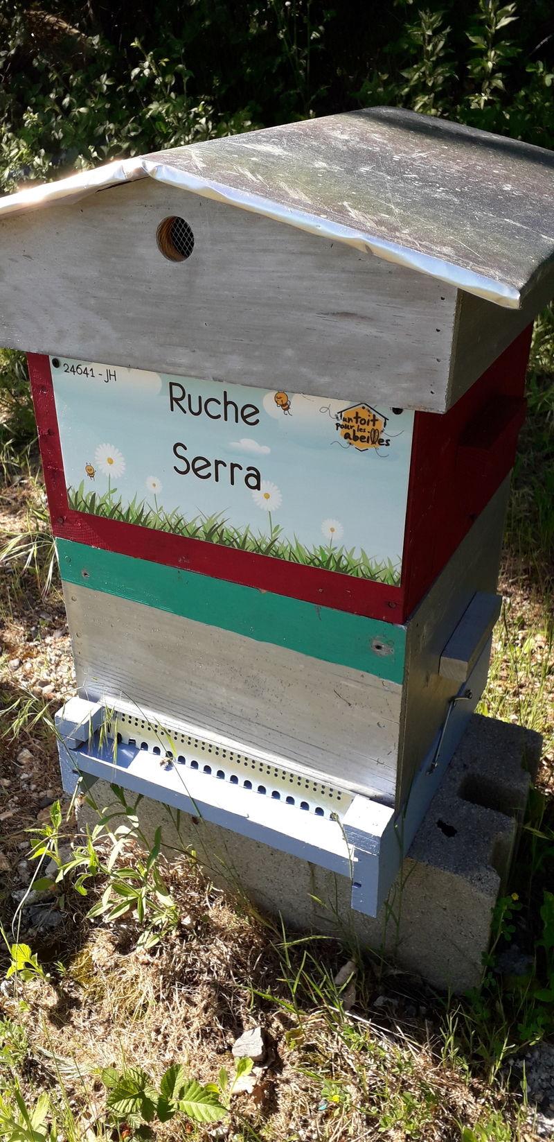 La ruche Serra
