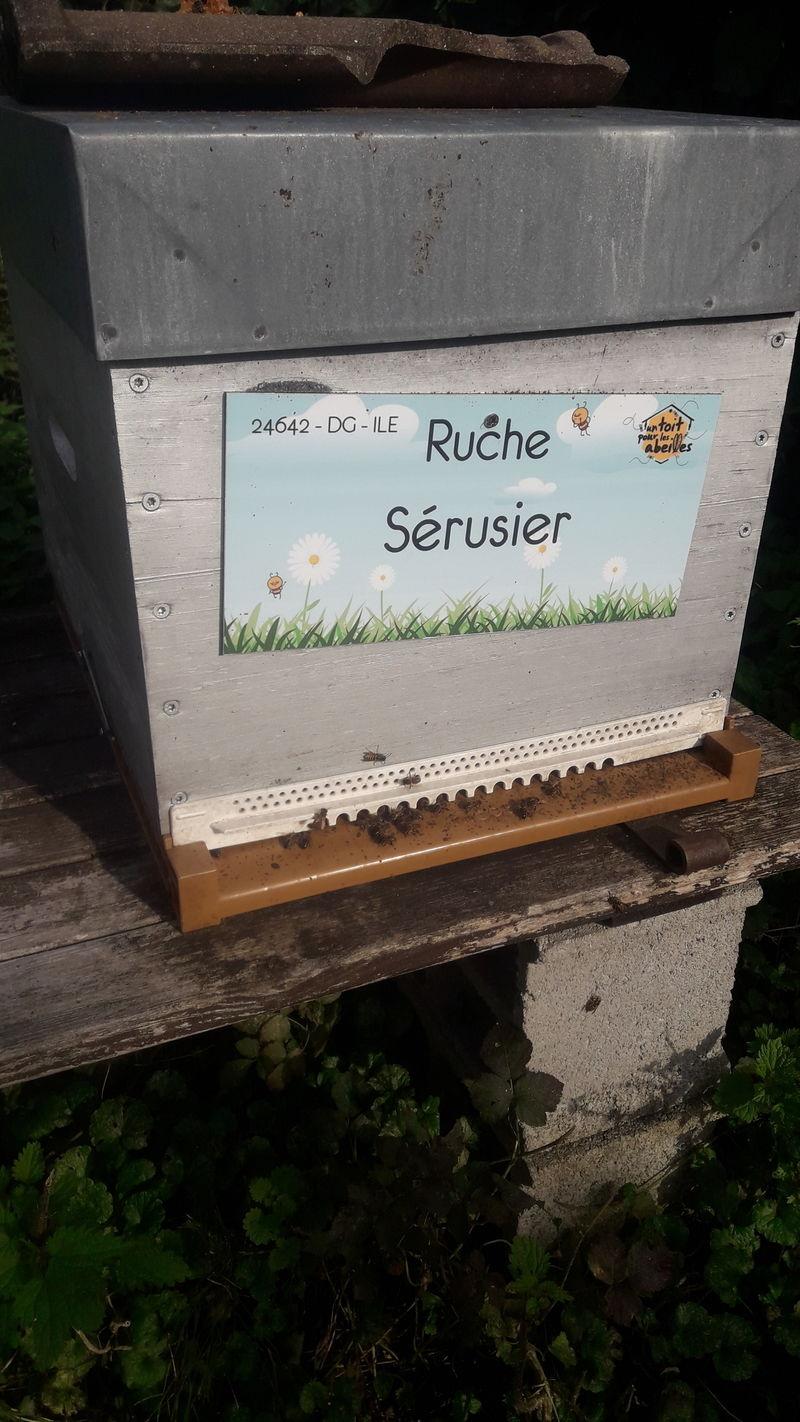 La ruche Sérusier