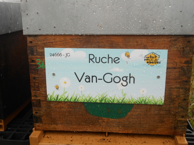 La ruche Van-Gogh