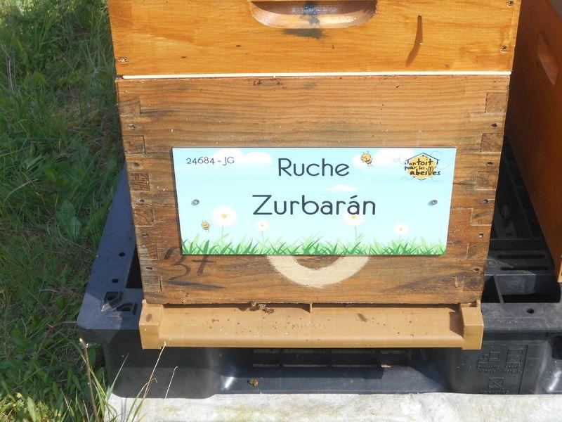 La ruche Zurbarán