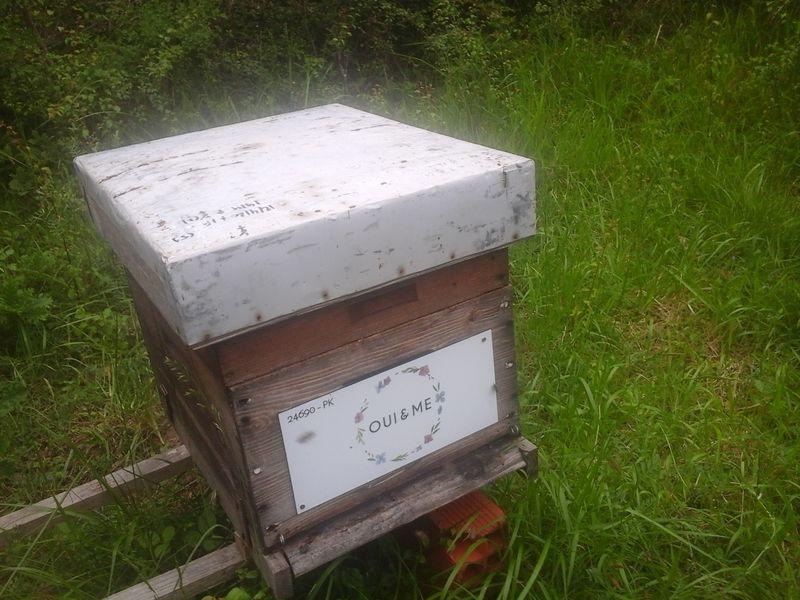 La ruche OUI & ME