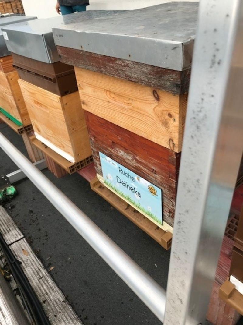 La ruche Deïneka