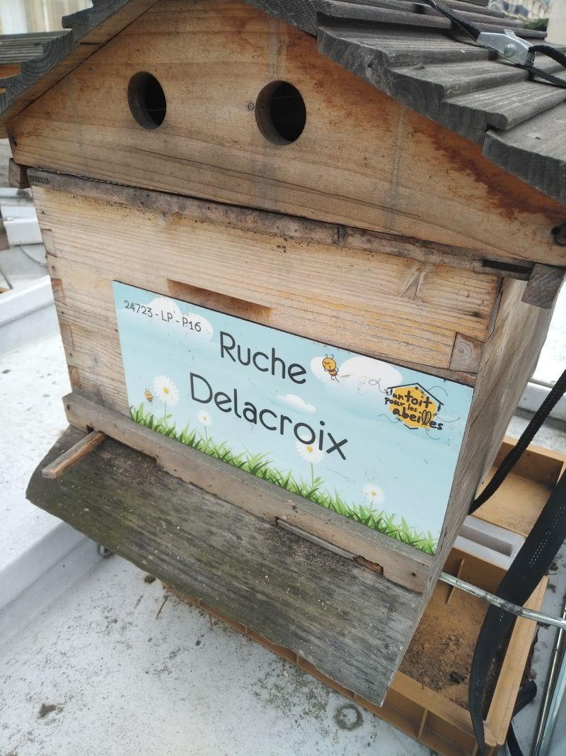 La ruche Delacroix