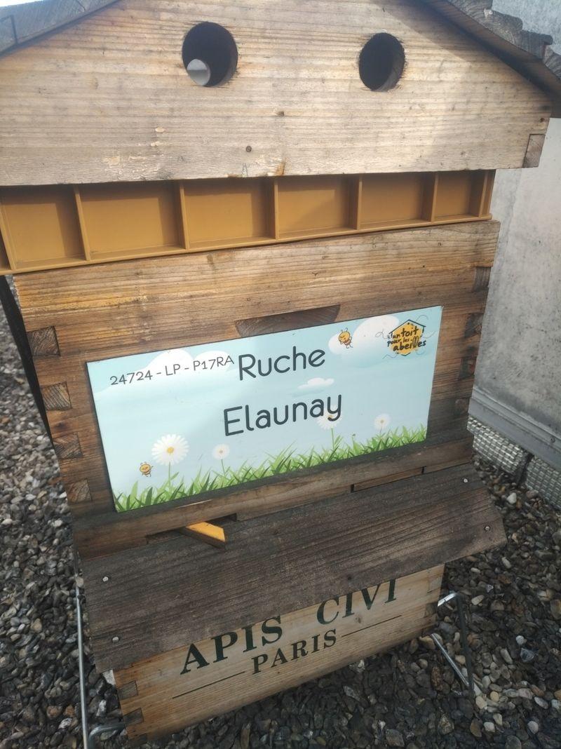 La ruche Elaunay