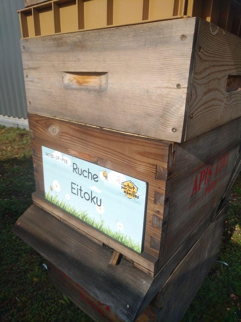 La ruche Eitoku