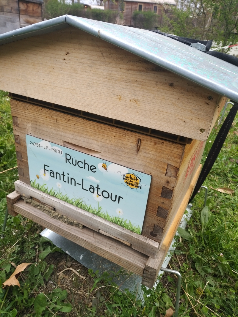 La ruche Fantin-Latour