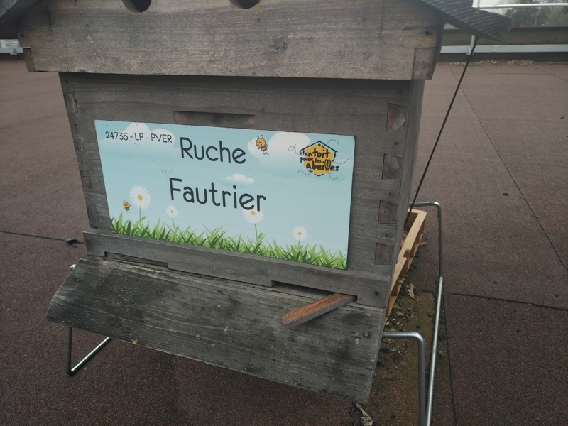 La ruche Fautrier
