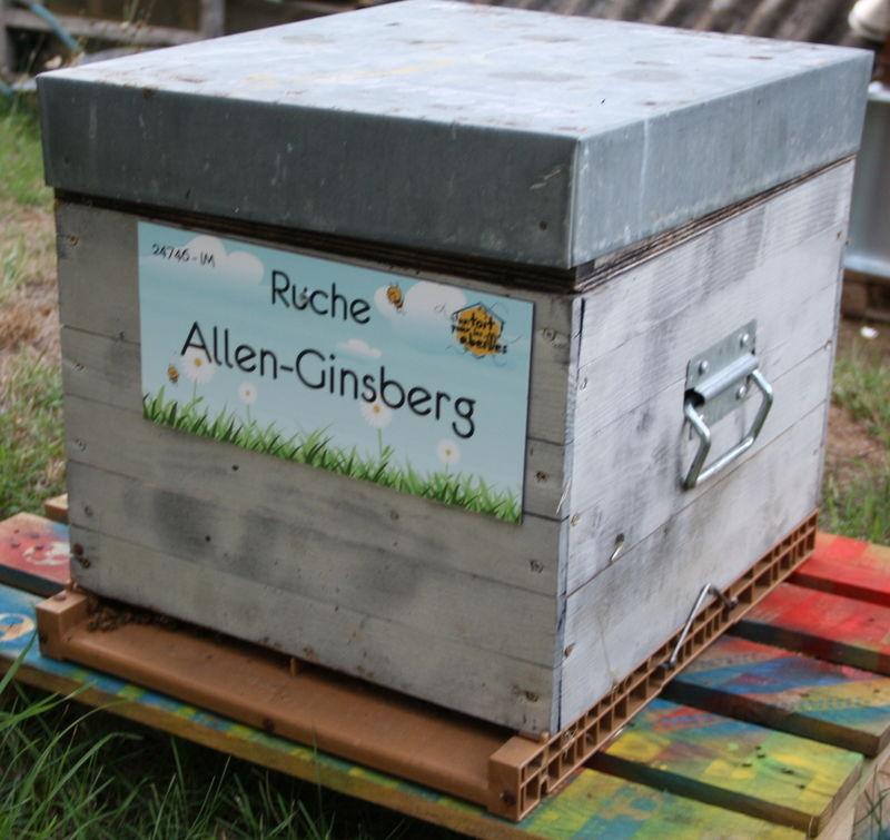 La ruche Allen-Ginsberg