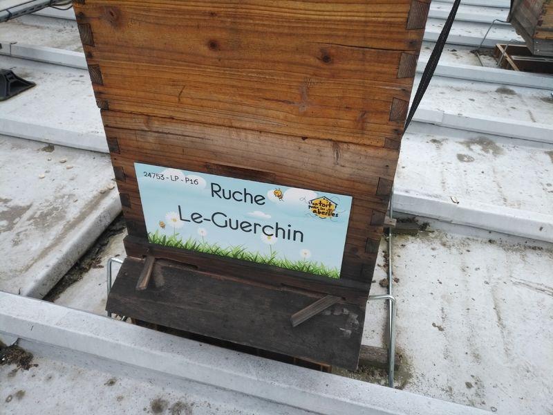 La ruche Le-Guerchin