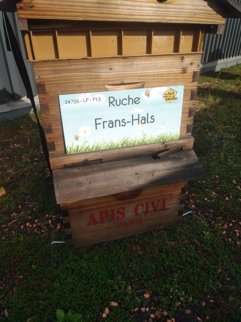 La ruche Frans-Hals