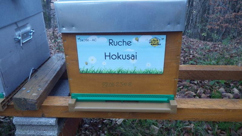 La ruche Hokusai